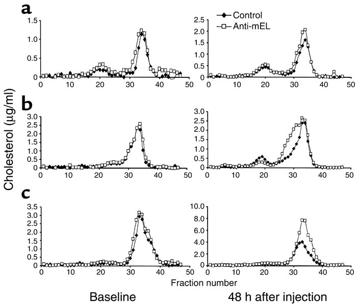 Plasma lipoprotein profiles at baseline and after antibody injection. Po...