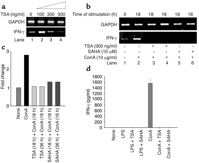 Downregulation of IFN-γ transcript and protein levels by TSA and SAHA. (...