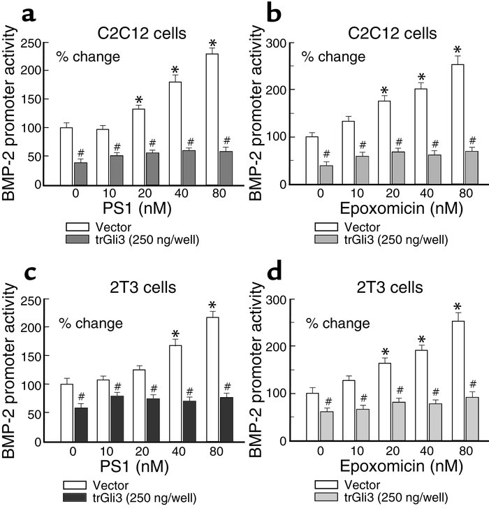 The stimulatory effects of proteasome inhibitors on BMP-2 expression are...
