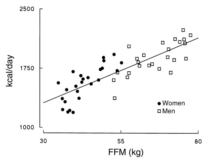 REE is plotted vs. FFM for the men and women participating in the study.