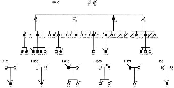 Pedigree drawings of restrictive cardiomyopathy families affected by car...
