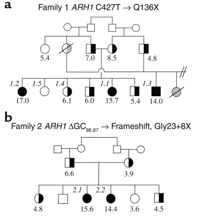 Pedigrees of family 1 (a) and family 2 (b). The plasma cholesterol conce...