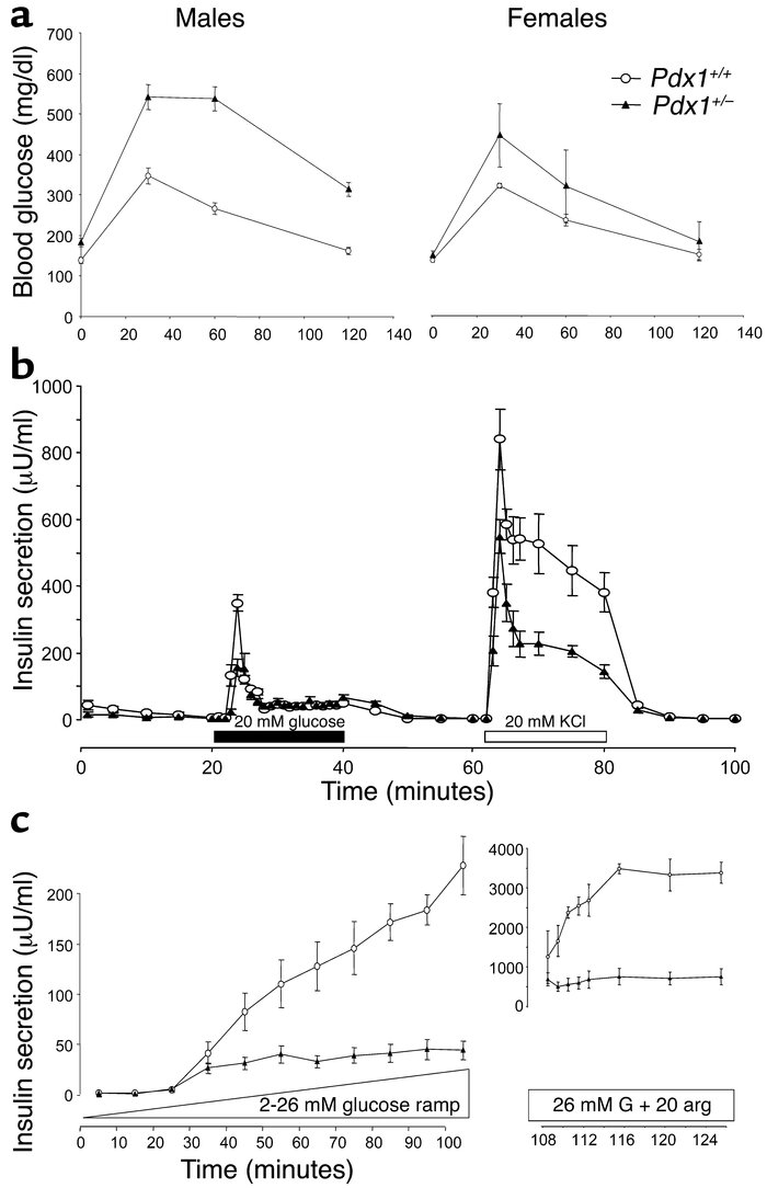 Glucose tolerance and secretagogue-induced pancreatic insulin release in...