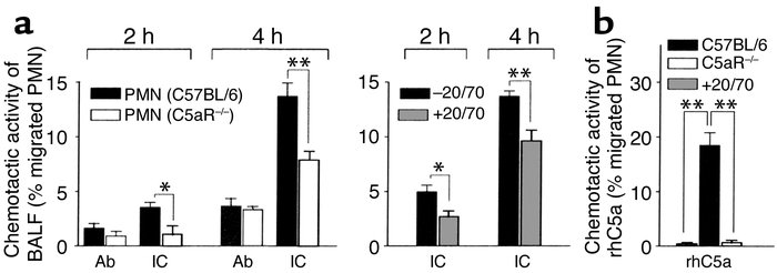 Functional detection of bioactive C5a in BALF from IC-challenged mice. P...