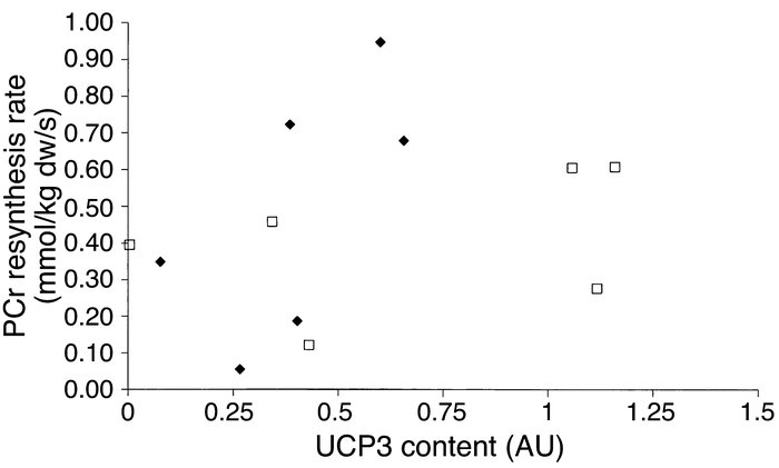 Relationship between UCP3 protein content (arbitrary units) and PCr resy...