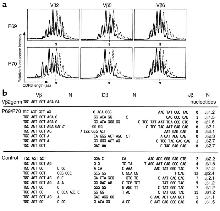 TCR-β junction analysis. (a) TCR CDR3-length profile of Vβ2, Vβ5, and Vβ...
