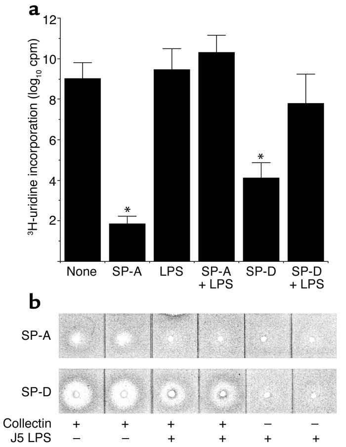 Growth inhibition by rSP-A and rSP-D is blocked by J5 LPS. (a) E. coli K...