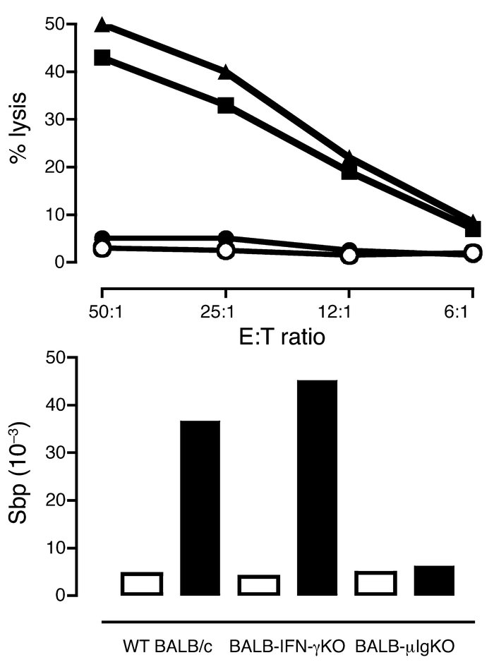 Cytotoxic and antibody response to p185neu of WT BALB/c mice shot at 2 w...