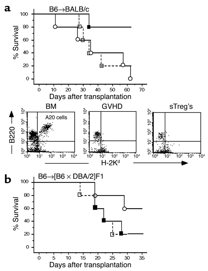 GVL/GVT effects after control of GVHD by sTreg's. (a) A20 leukemic cells...
