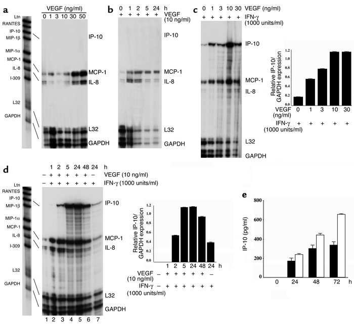 Effect of VEGF on endothelial cell chemokine expression. (a–d) Confluent...
