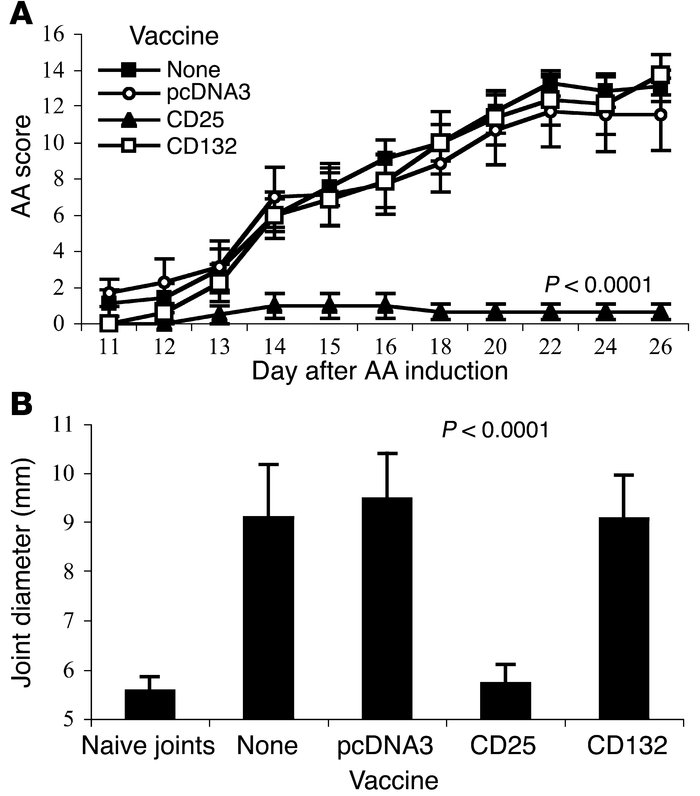 CD25 DNA vaccination protects against AA. (A) Groups of eight rats each ...
