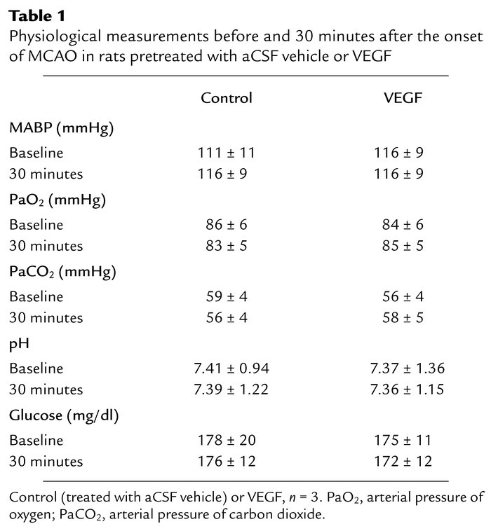 Physiological measurements before and 30 minutes after the onset of MCAO...