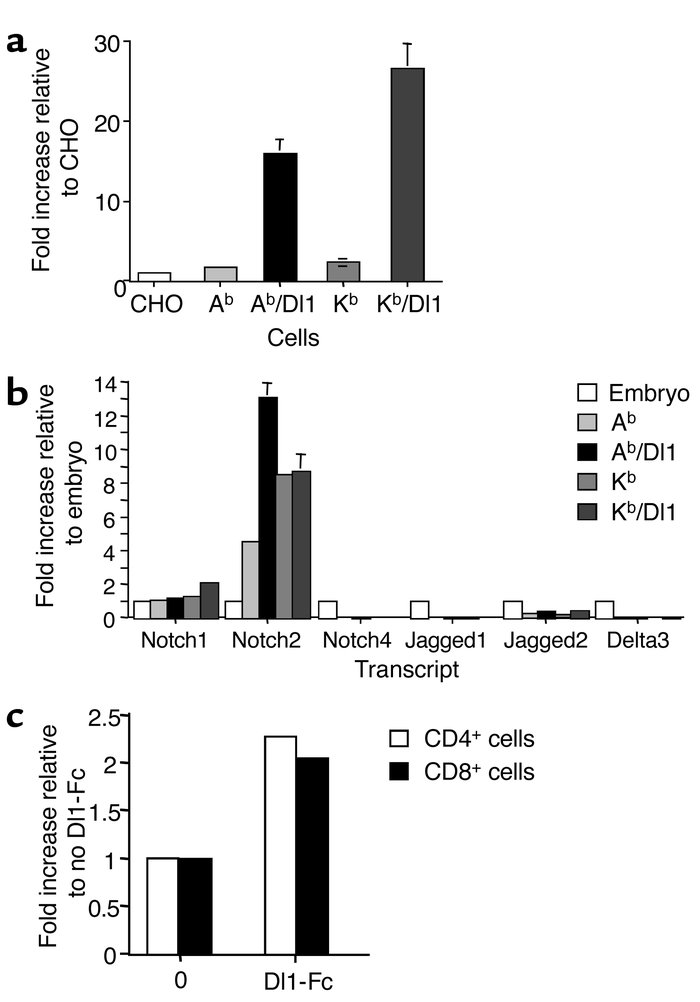 Dl1 is able to activate Notch signaling in reporter cell assays and in T...