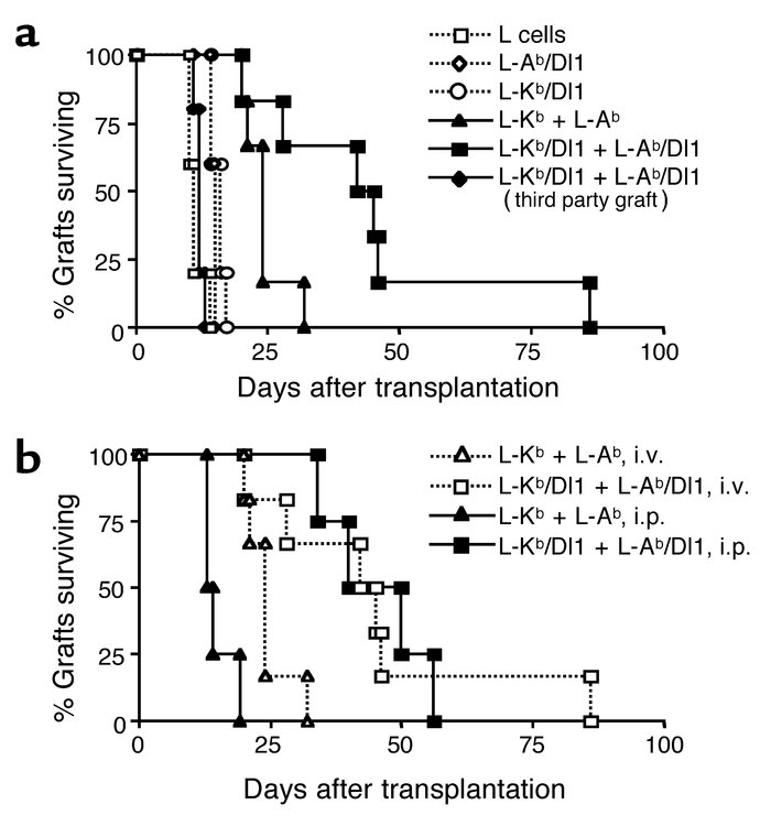 Notch ligand transfectants induce prolonged graft survival. (a) C3H/HeJ ...