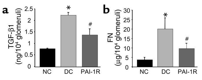Effects of PAI-1R on TGF-β1 and fibronectin (FN) content in glomeruli at...