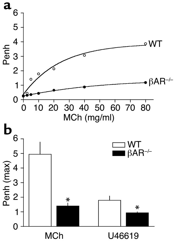 βAR–/– mice display paradoxic contractile responses as assessed by whole...
