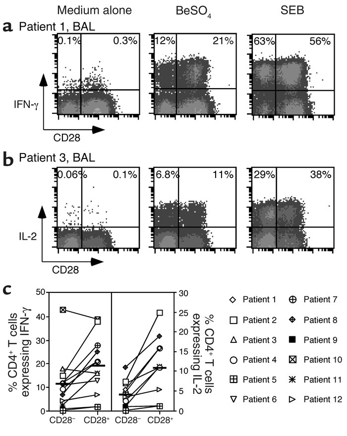 Intracellular staining for IFN-γ and IL-2 in stimulated BAL T cells from...