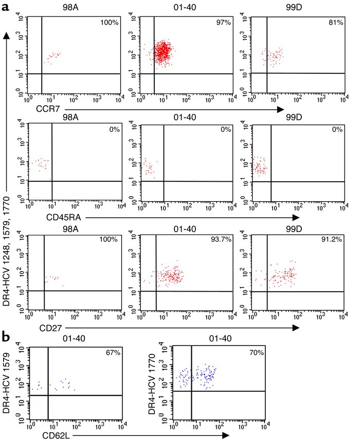 Ex vivo phenotypic analysis of HCV-specific memory CD4 T cells using MHC...