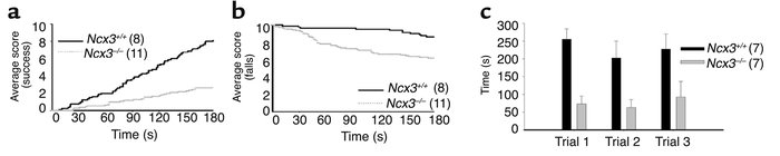Behavior alterations in Ncx3–/– mice. (a) Average success score and (b) ...