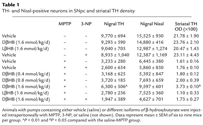 TH- and Nissl-positive neurons in SNpc and striatal TH density