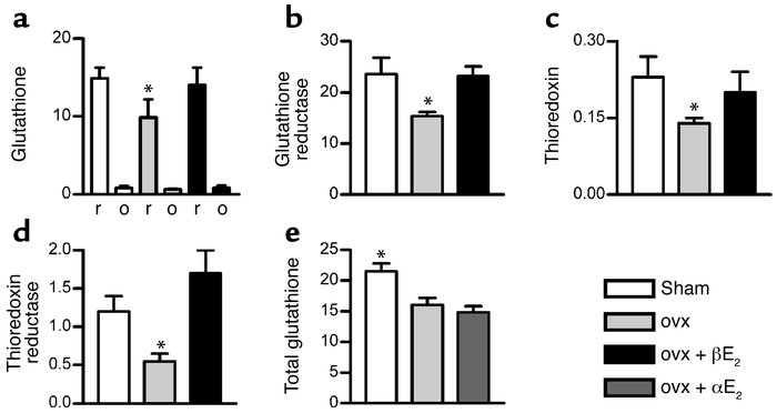 Estrogen maintains thiol antioxidant system in rat bone marrow. (a and b...
