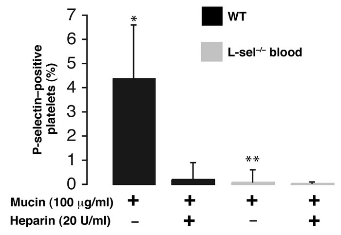 In vitro demonstration of the essential role of leukocyte L-selectin in ...