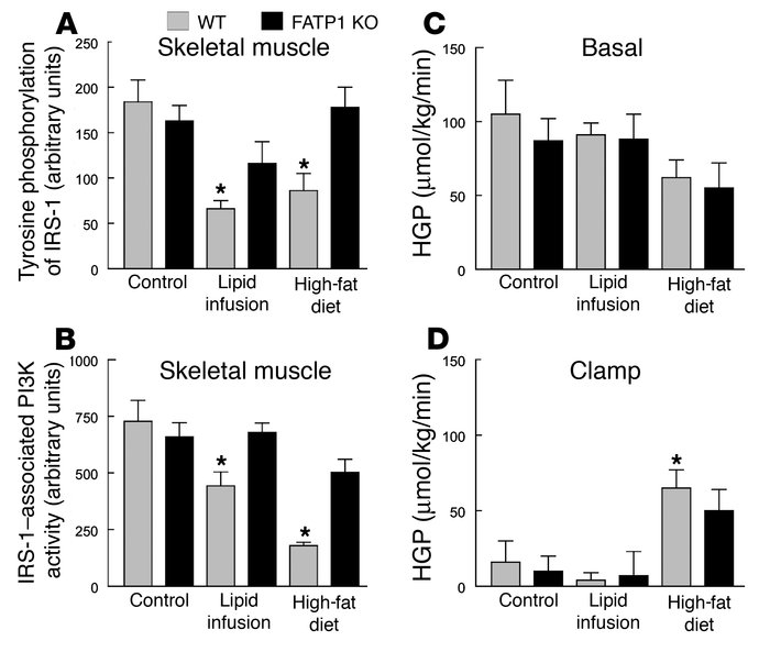 Insulin-signaling measurement in skeletal muscle (gastrocnemius) and hep...