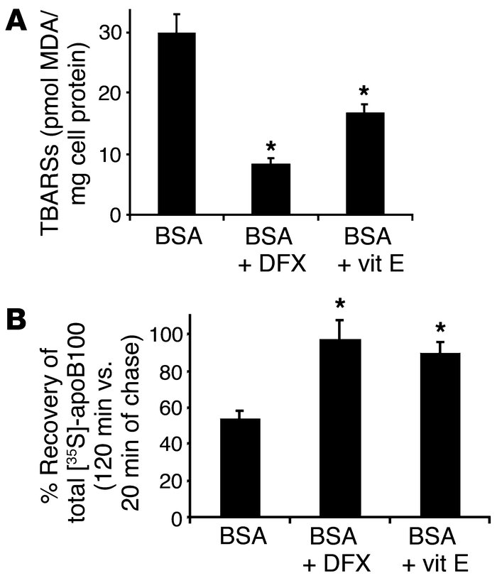 Lipid peroxides regulate basal ApoB100 degradation in primary rat hepato...
