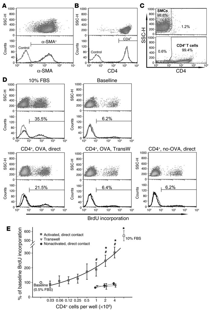 CD4+ T cells induce airway myocyte proliferation, dependent on T cell ac...