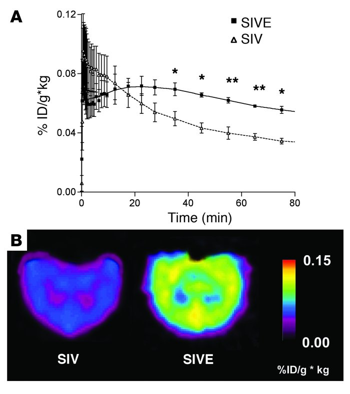 [11C](R)-PK11195–specific binding is higher in macaques that develop SIV...