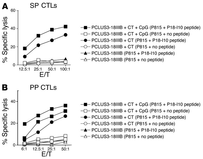 Induction of CTL responses in SP and PPs after TCI with HIV peptide and ...