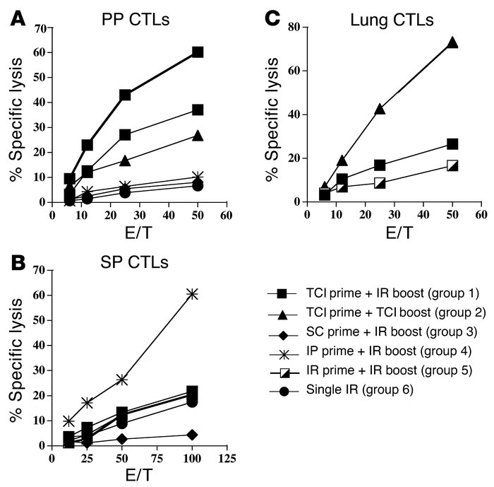 TCI generated CTL responses in the PPs, SP, and lung. BALB/c mice (n = 5...