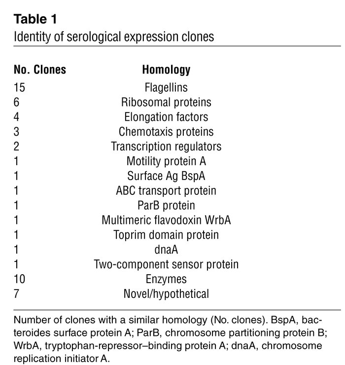 Identity of serological expression clones