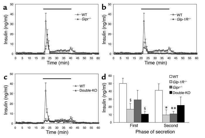 Glucose-induced insulin secretion in perfused pancreata from (a) Gipr–/–...