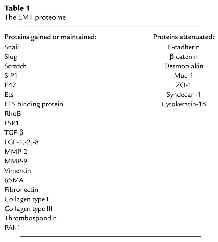 The EMT proteome