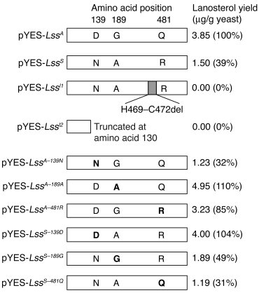 In vitro LSS activity measured as lanosterol yield in yeast. Amino acid ...
