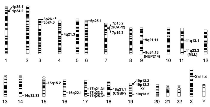 Chromosomal distribution of the sites of βA-T87Q-globin lentiviral vecto...