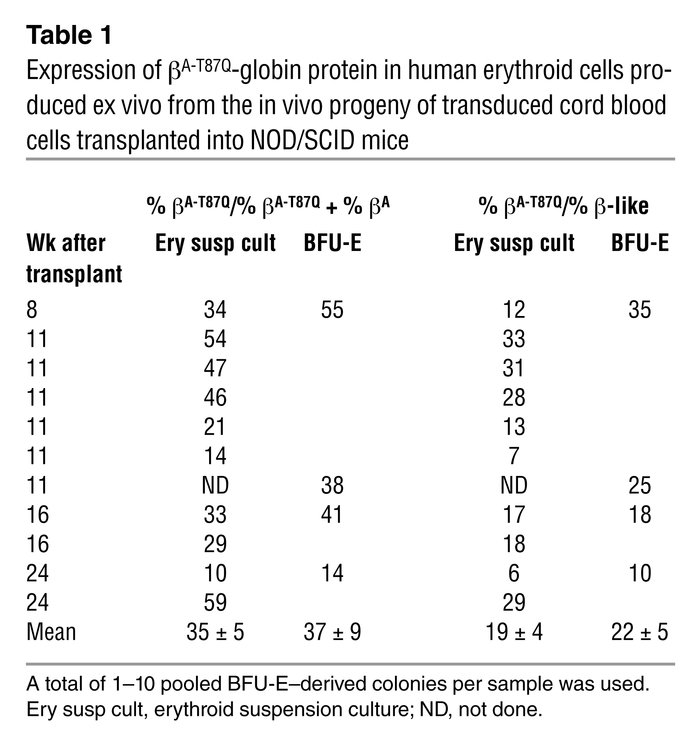 Expression of βA-T87Q-globin protein in human erythroid cells produced e...