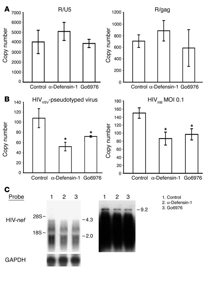 α-Defensin-1 and Go6976 inhibited HIV-1 infection at the steps of nuclea...