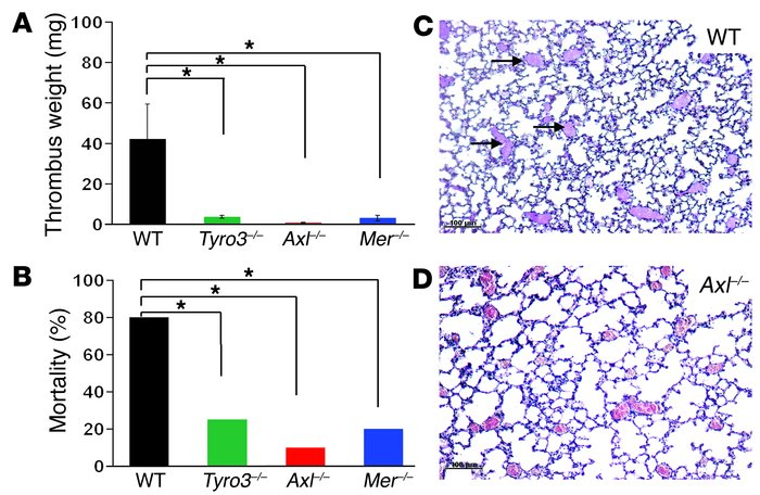 Loss of Tyro3, Axl, or Mer protects mice against thrombosis. (A) Stasis-...