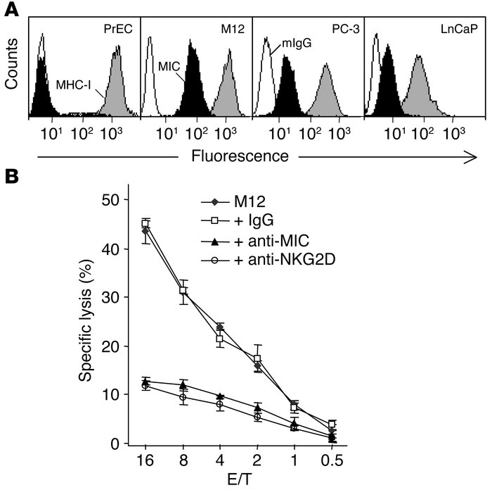 MIC expression in prostate cancer cell lines and susceptibility of prost...