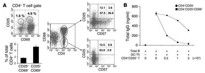 CD4+CD25+ T cell population and suppression of Ig production. (A) CD4+CD...