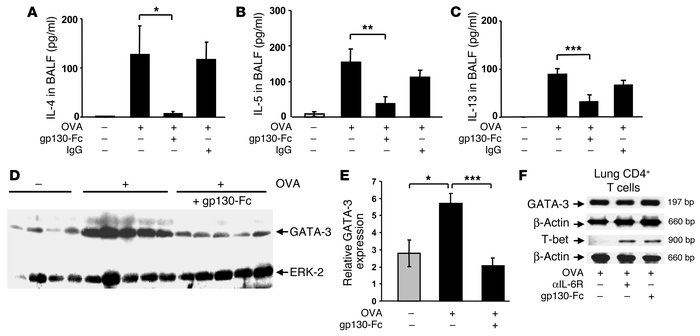 Local blockade of sIL-6R by gp130-Fc downregulates IL-4, IL-5, and IL-13...