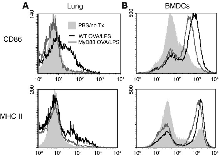 Pulmonary DCs are not activated by LPS in the absence of MyD88 in vivo. ...