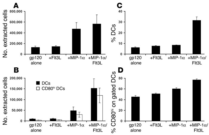Analysis of DCs extracted from injected muscles. BALB/c mice were immuni...
