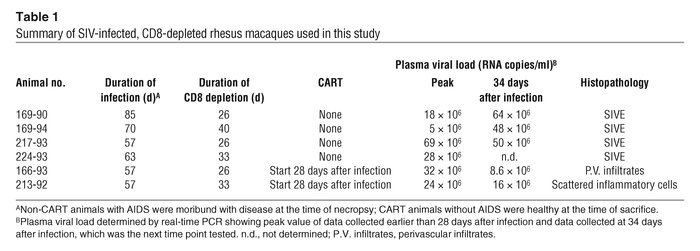 Summary of SIV-infected, CD8-depleted rhesus macaques used in this study