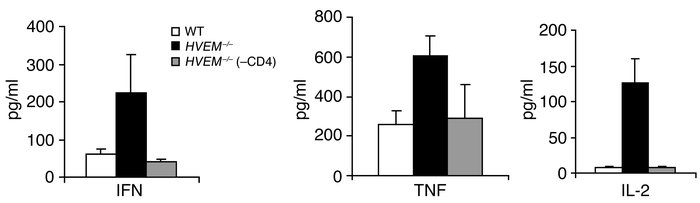 CD4+ T cells are required for higher cytokine production in HVEM –/ – mi...