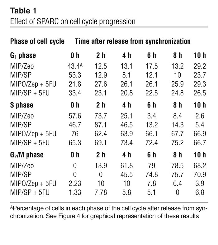 Effect of SPARC on cell cycle progression