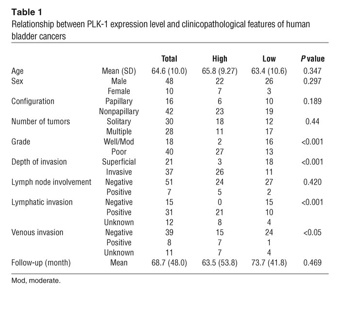Relationship between PLK-1 expression level and clinicopathological feat...
