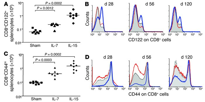 The cytokine rhIL-7 expands both naive and memory/activated CD8+ T cell ...